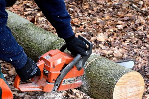 How to use a chainsaws safely featured image.