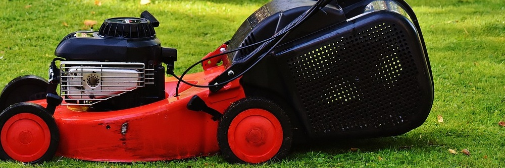 Self propelled lawn mower drive themselves.