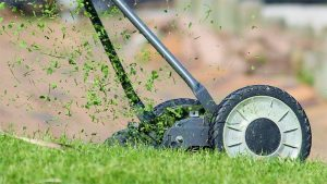 Best Reel Mower Featured Image.