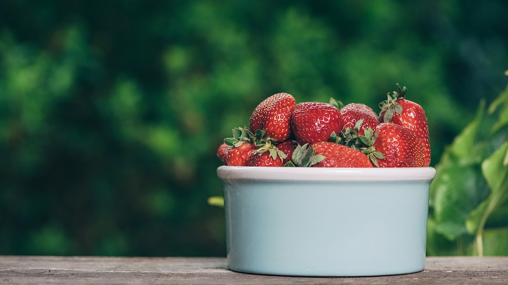 """Featured image for the """"how to grow strawberries"""" article."""