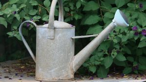 A watering can.