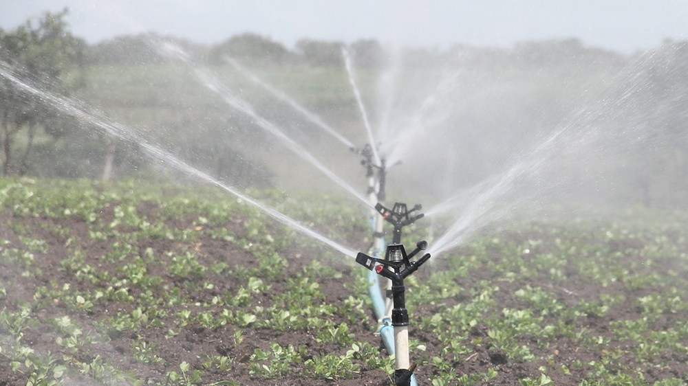 best drip irrigation system featured image.